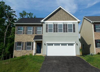 Roanoke VA Single Family Home For Sale: $314,950