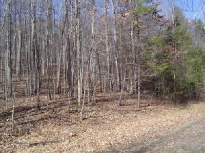 Residential Lots & Land For Sale: Loch Haven Dr