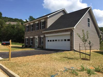 Roanoke VA Single Family Home For Sale: $334,950