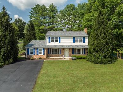 Blue Ridge Single Family Home For Sale: 206 Ridgeview Rd