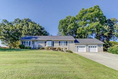Bedford County Single Family Home For Sale: 713 Bluewater Dr