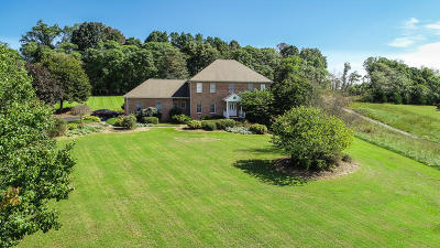 Bedford County Single Family Home For Sale: 303 Longhill Rd