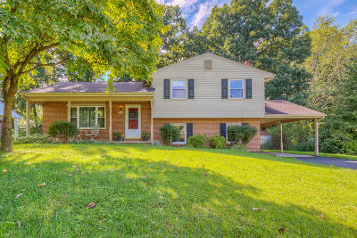 Roanoke Single Family Home For Sale: 5406 Wipledale Ave