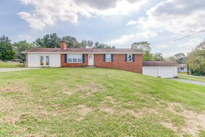 Franklin County Single Family Home For Sale: 452 Little Mountain Dr
