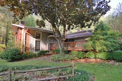 Single Family Home For Sale: 5361 Yellow Mountain Rd