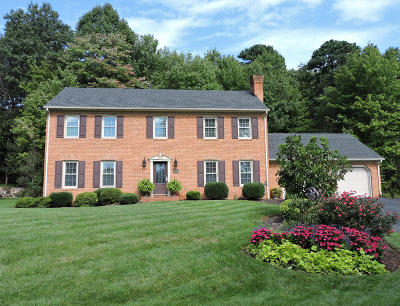 Roanoke County Single Family Home For Sale: 6104 Buckland Mills Rd