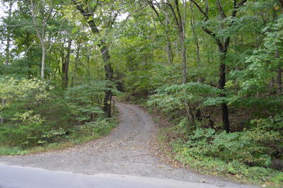Residential Lots & Land For Sale: Little Catawba Creek Rd