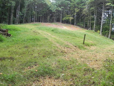 Residential Lots & Land For Sale: 5870 Roselawn Rd