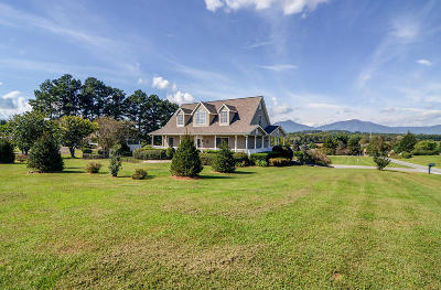 Bedford County Single Family Home For Sale: 1747 Three Otters Rd