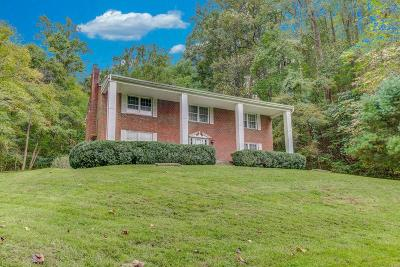 Roanoke County Single Family Home For Sale: 7777 Apple Grove Ln