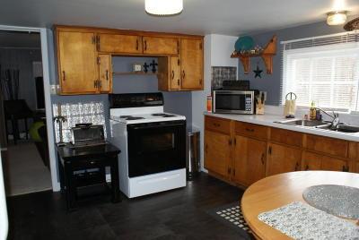 Roanoke Single Family Home For Sale: 4554 Narrows Ln SW