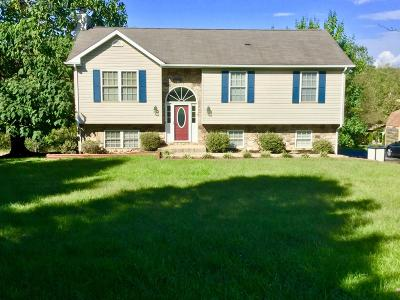Bedford County Single Family Home For Sale: 1087 Old Dominion Ct