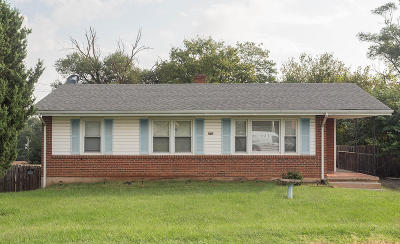 Roanoke City County Single Family Home For Sale: 229 Frances Dr NW