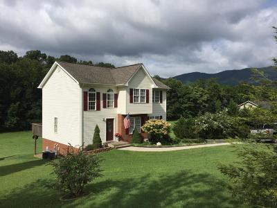 Botetourt County Single Family Home For Sale: 1705 Haymakertown Rd