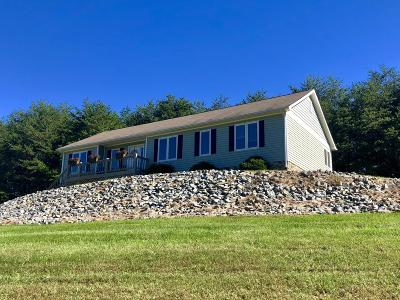 Bedford County Single Family Home For Sale: 225 Buck Run Dr