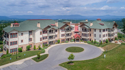 Roanoke County Attached For Sale: 5442 The Peaks Dr #209