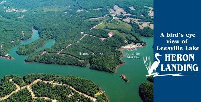 Pittsylvania County Residential Lots & Land For Sale: Lot 118 Island Point Dr