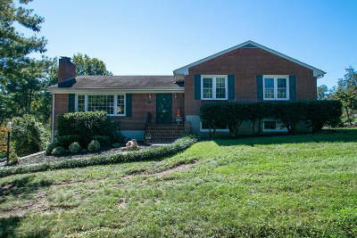 Roanoke County Single Family Home For Sale: 4436 Wyndale Ave