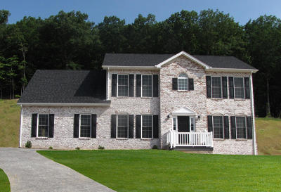 Roanoke County Single Family Home For Sale: 4265 Campbell View Ln