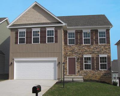 Roanoke County Single Family Home For Sale: 8334 Leighburn Dr