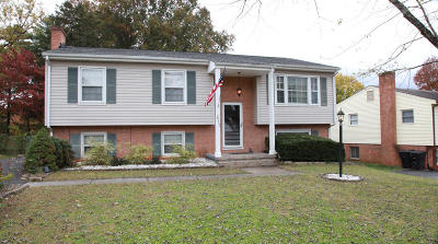 Roanoke County Single Family Home For Sale: 517 McGeorge Dr