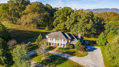 Single Family Home For Sale: 873 Huff Rd