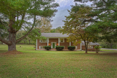 Botetourt County Single Family Home For Sale: 593 Brunswick Forge Rd