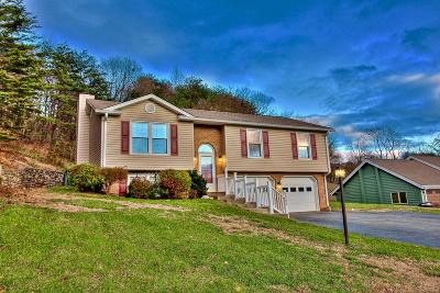 Roanoke Single Family Home For Sale: 5380 Merriman Rd