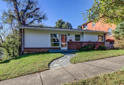 Roanoke City County Single Family Home For Sale: 1018 Windsor Ave SW