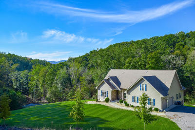 Botetourt County Single Family Home For Sale: 213 West Rd