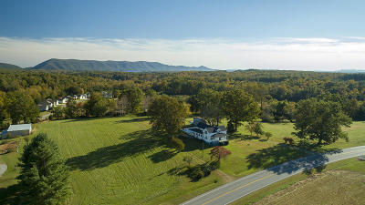 Bedford County Single Family Home For Sale: 12812 Smith Mountain Lake Pkwy