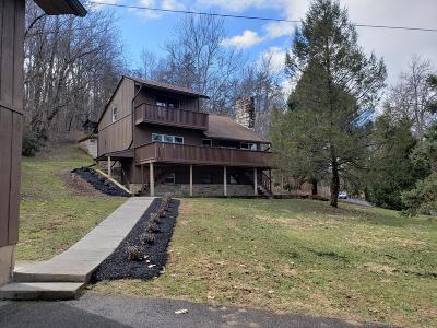 Botetourt County Single Family Home For Sale: 942 Parsons Rd