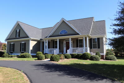 Bedford County Single Family Home For Sale: 112 Pointe O Woods Dr