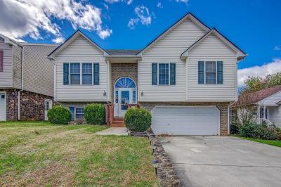 Bedford County Single Family Home For Sale: 1262 Emerald Crest Dr