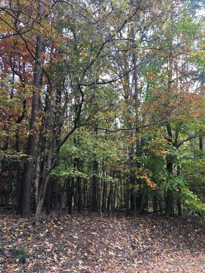 Residential Lots & Land For Sale: Lot 15 Freeboard Dr