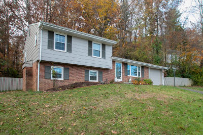 Roanoke County Single Family Home For Sale: 5332 Cave Spring Ln