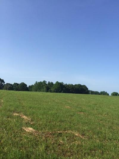 Bedford County Residential Lots & Land For Sale: Lot 16 Smith Mountain Lake Pkwy
