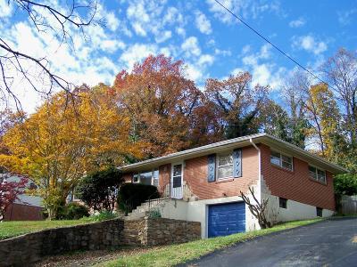 Single Family Home For Sale: 2417 Brambleton Ave SW