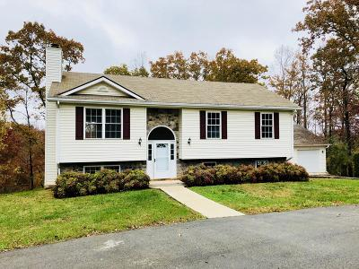 Bedford County Single Family Home For Sale: 1096 Colony Ct