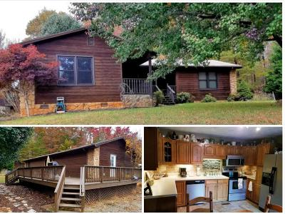 Boones Mill Single Family Home For Sale: 370 Creekview Dr