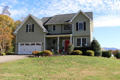 Moneta Single Family Home For Sale: 144 Channelview Dr