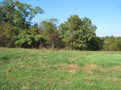Residential Lots & Land For Sale: Lot 7 Savanna Hills Dr