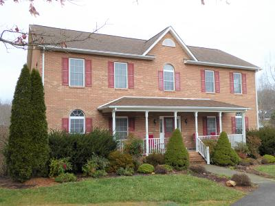 Rocky Mount Single Family Home For Sale: 70 Holly Knoll Dr