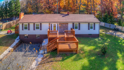 Roanoke County Single Family Home For Sale: 3520 Chaparral Dr