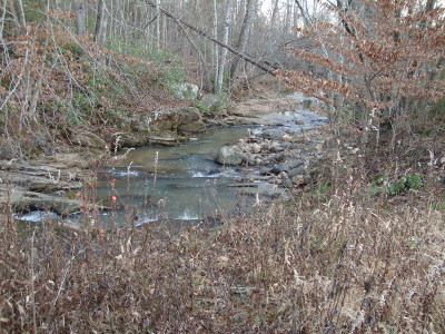 Bedford County Residential Lots & Land For Sale: Peaks Rd