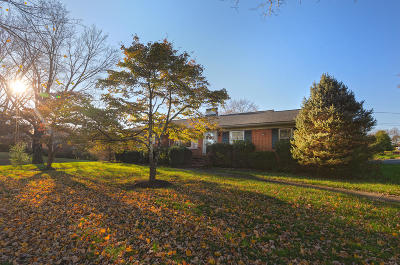 Roanoke County Single Family Home For Sale: 3903 Mud Lick Rd SW