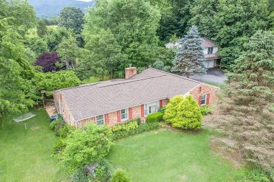 Botetourt County Single Family Home For Sale: 337 Blossom Ln