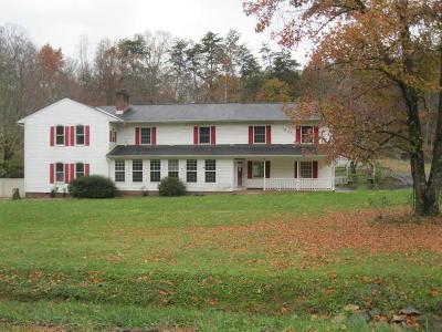 Blue Ridge Single Family Home For Sale: 1261 Mountain Pass Rd