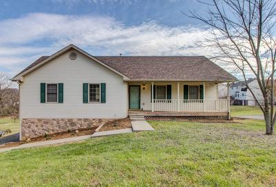 Vinton Single Family Home For Sale: 1535 Mountain View Rd