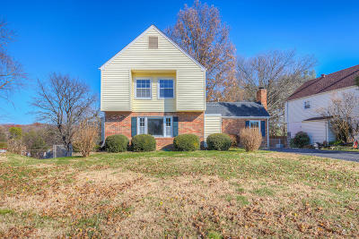 Roanoke County Single Family Home For Sale: 4919 Lantern St